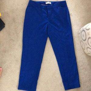 Cobalt blue Slim Cropped pants